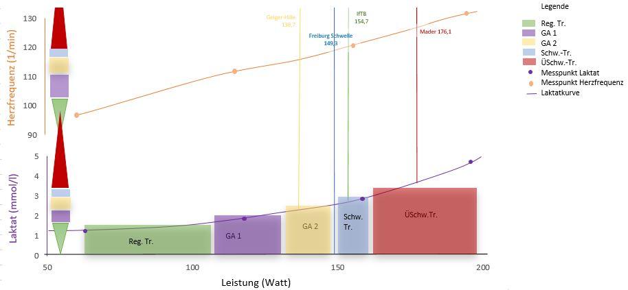 Abbildung Ergebnis der Lesitungsdiagnostik