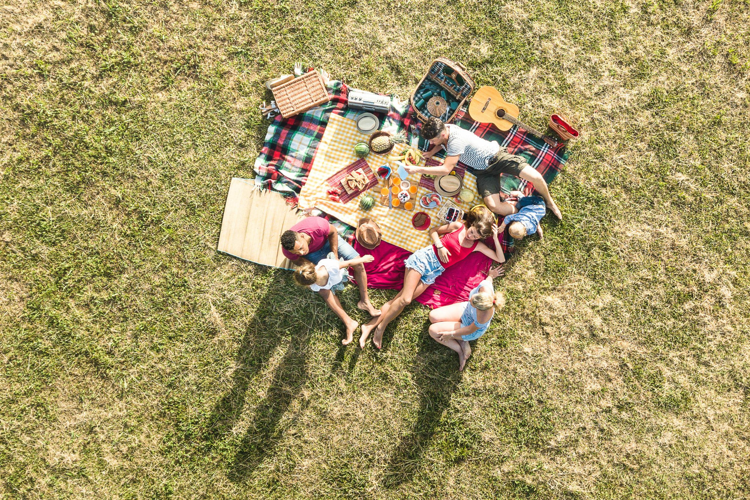 Ausflug: Familie auf einer Picknickdecke mit Speisen und Getränken auf der Wiese