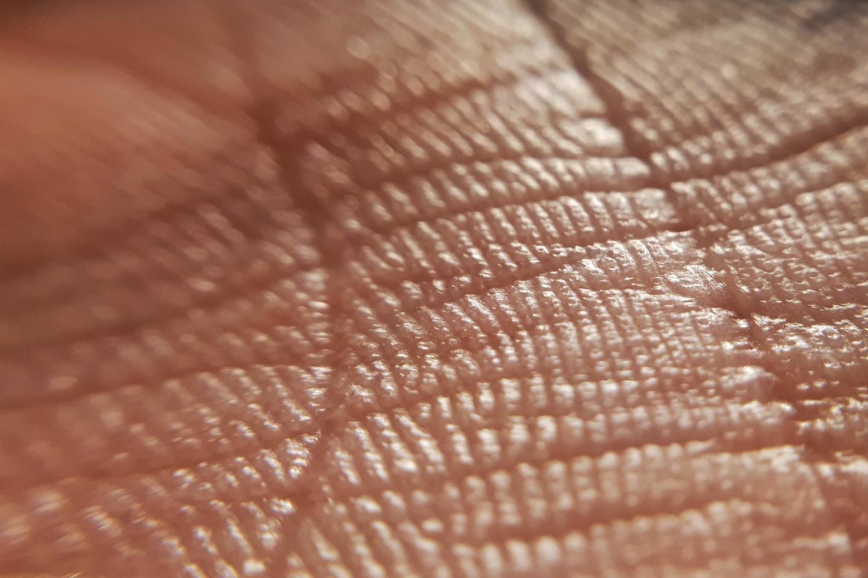 Hat: Nahaufnahme der Handfläche mit Lebenslinien