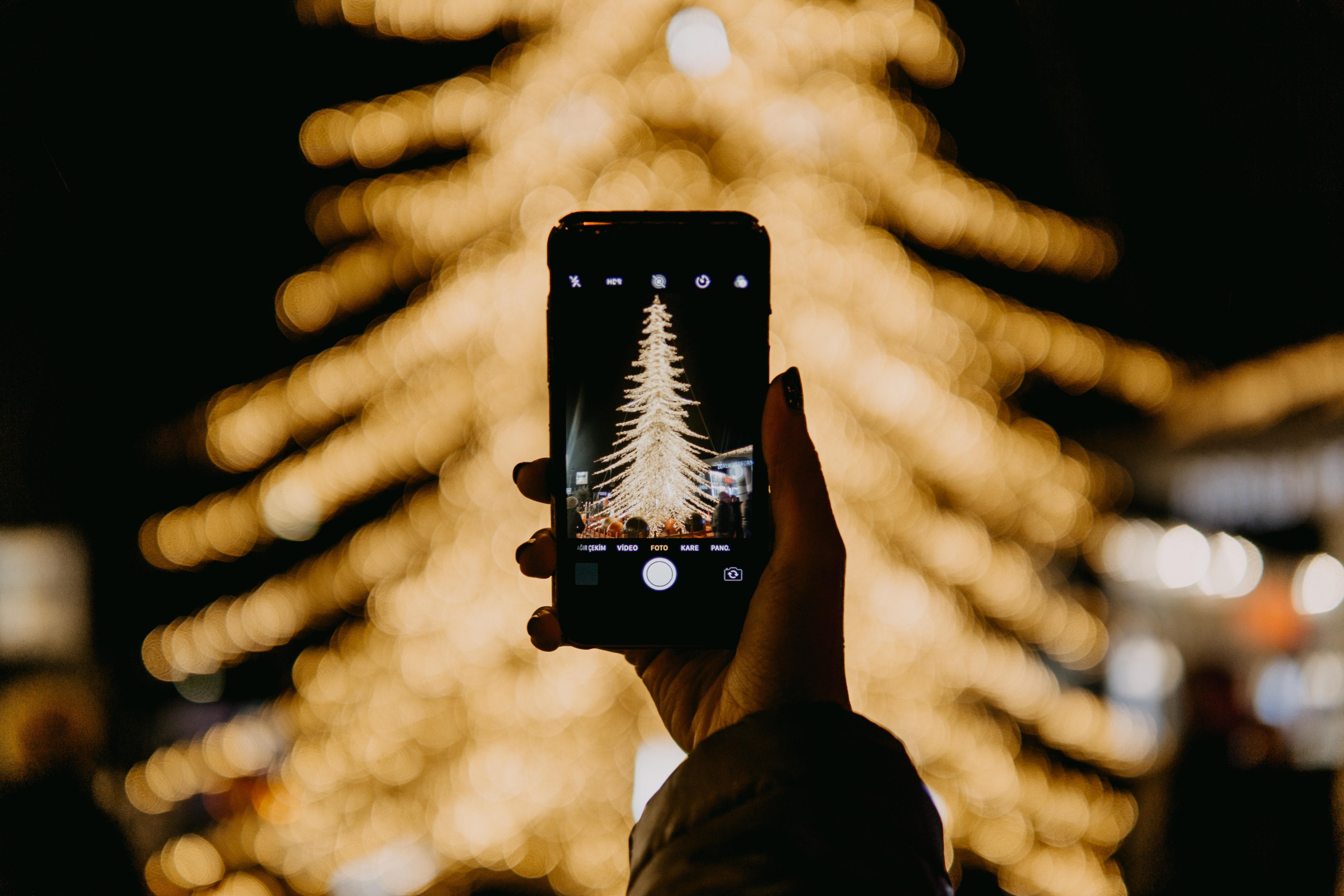 Jemand macht ein Foto von einem Weihnachtsbaum draußen