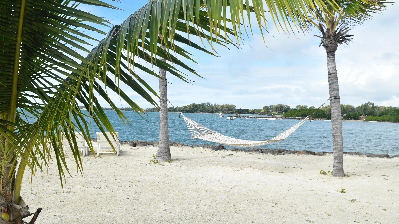 Checkliste-Urlaub: Hängematte zwischen zwei Palmen am Strand lädt im Urlaub zum Entspannen ein.