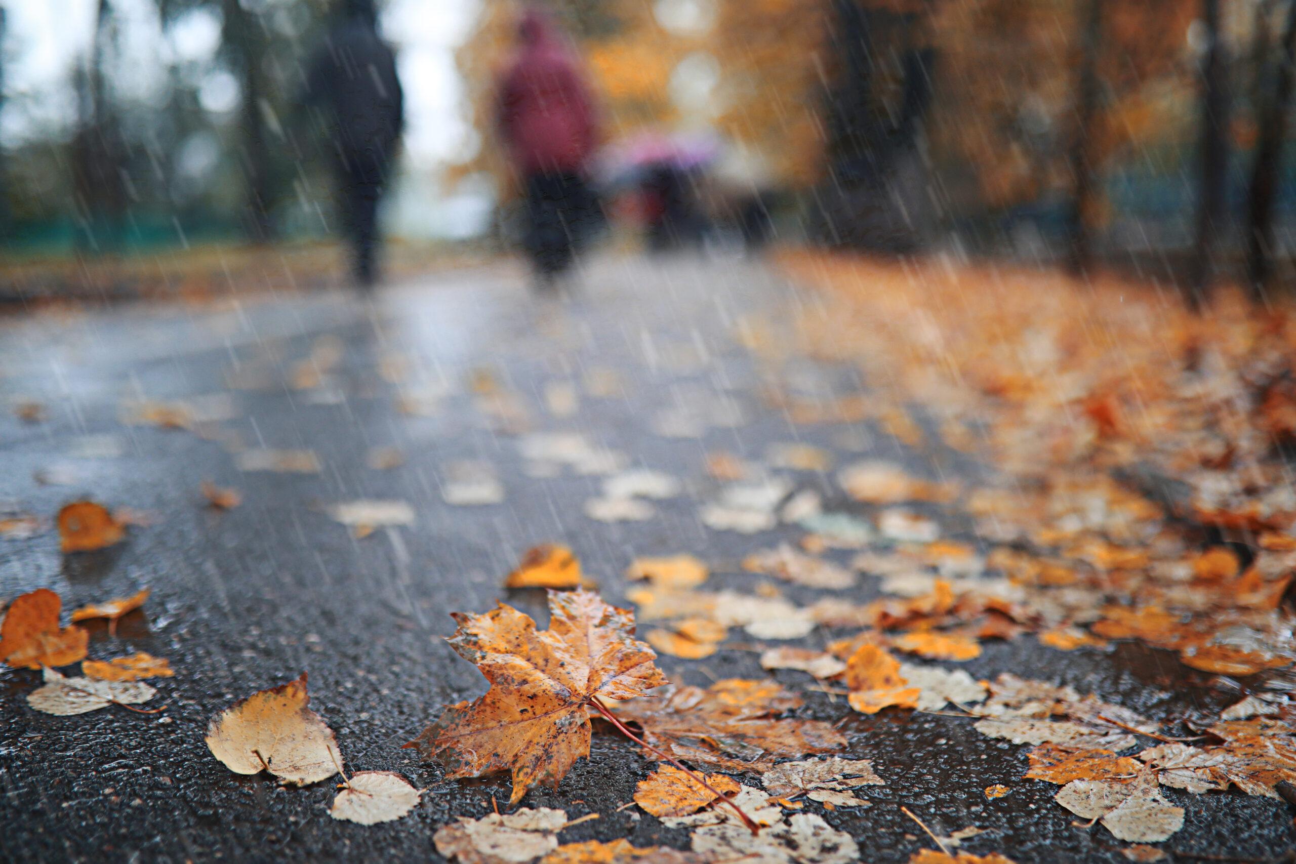 Outdoor-Sport: Herbstregen im Park
