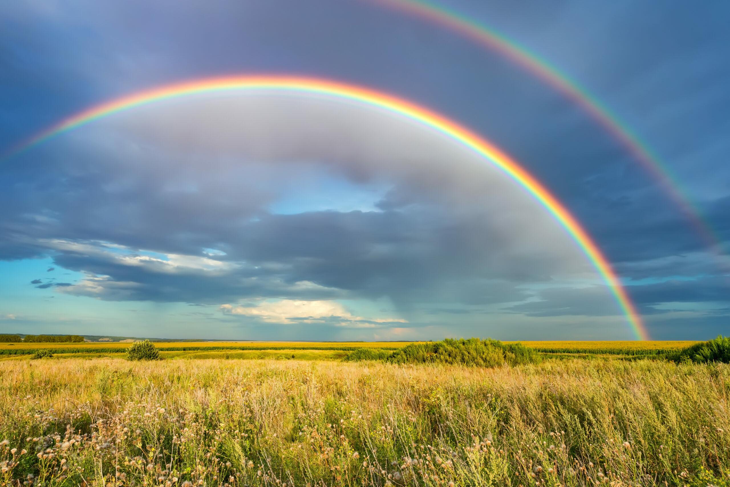 Krise: Regenbogen am gewittrigen Himmel im Sommer über einem Kornfeld
