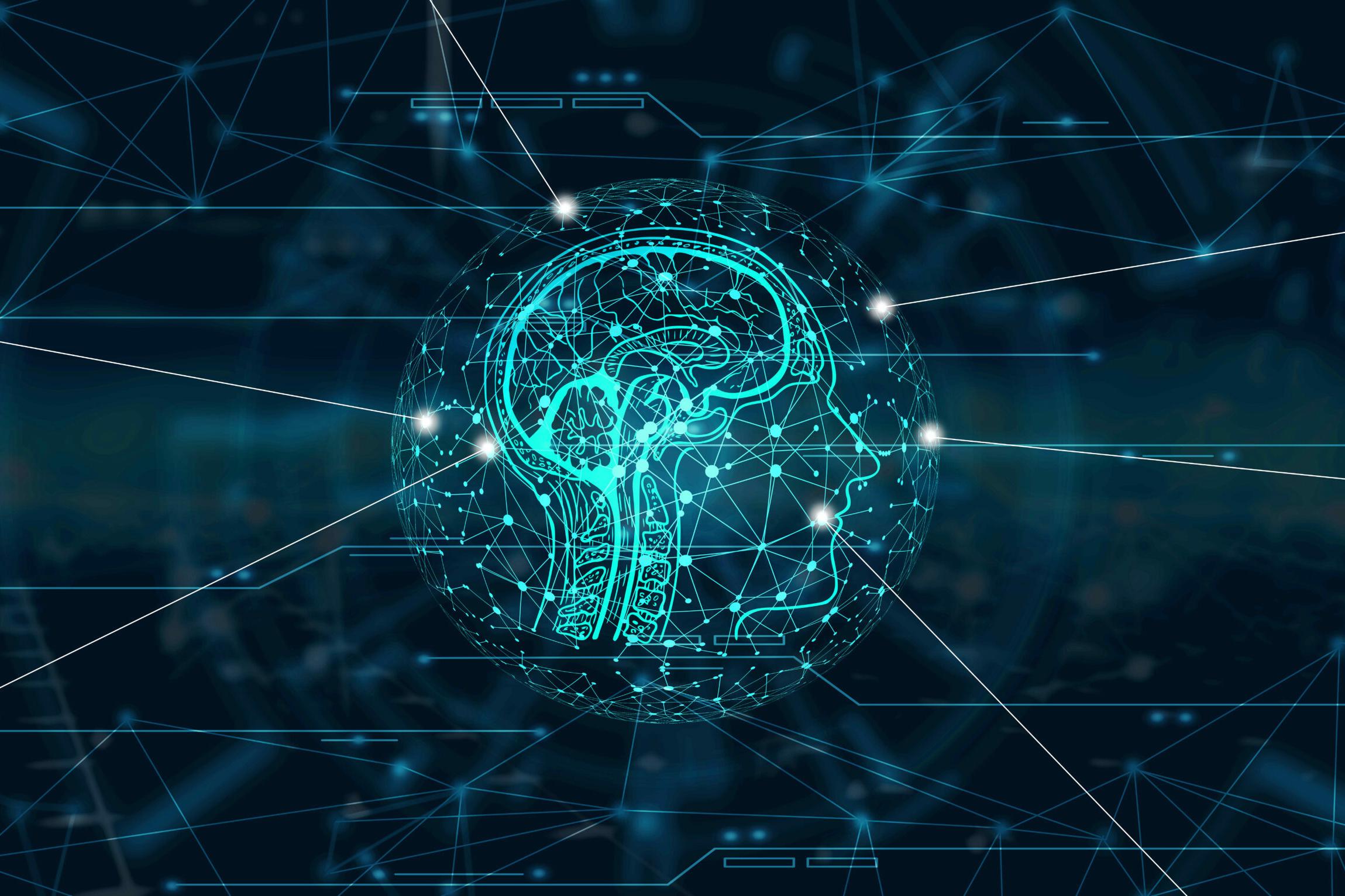 Ziele: Grafik vom Gehirn des Menschen im Kopf