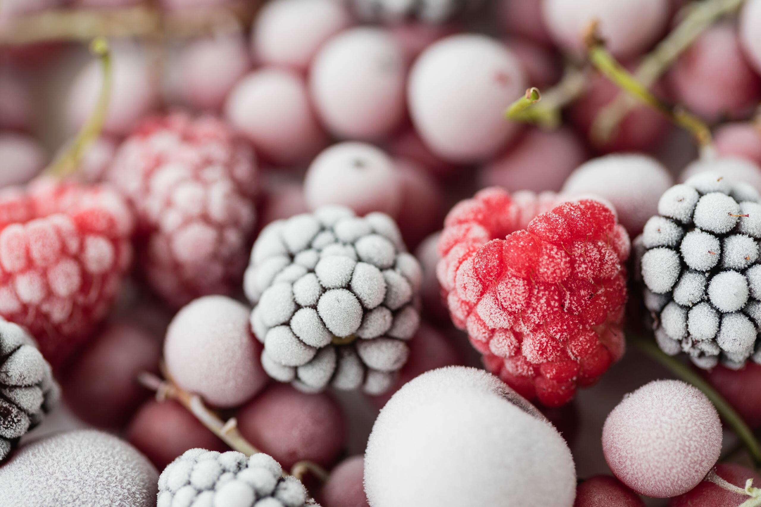 Tiefkühlkost: Gefrorene Beeren auf weißem Teller