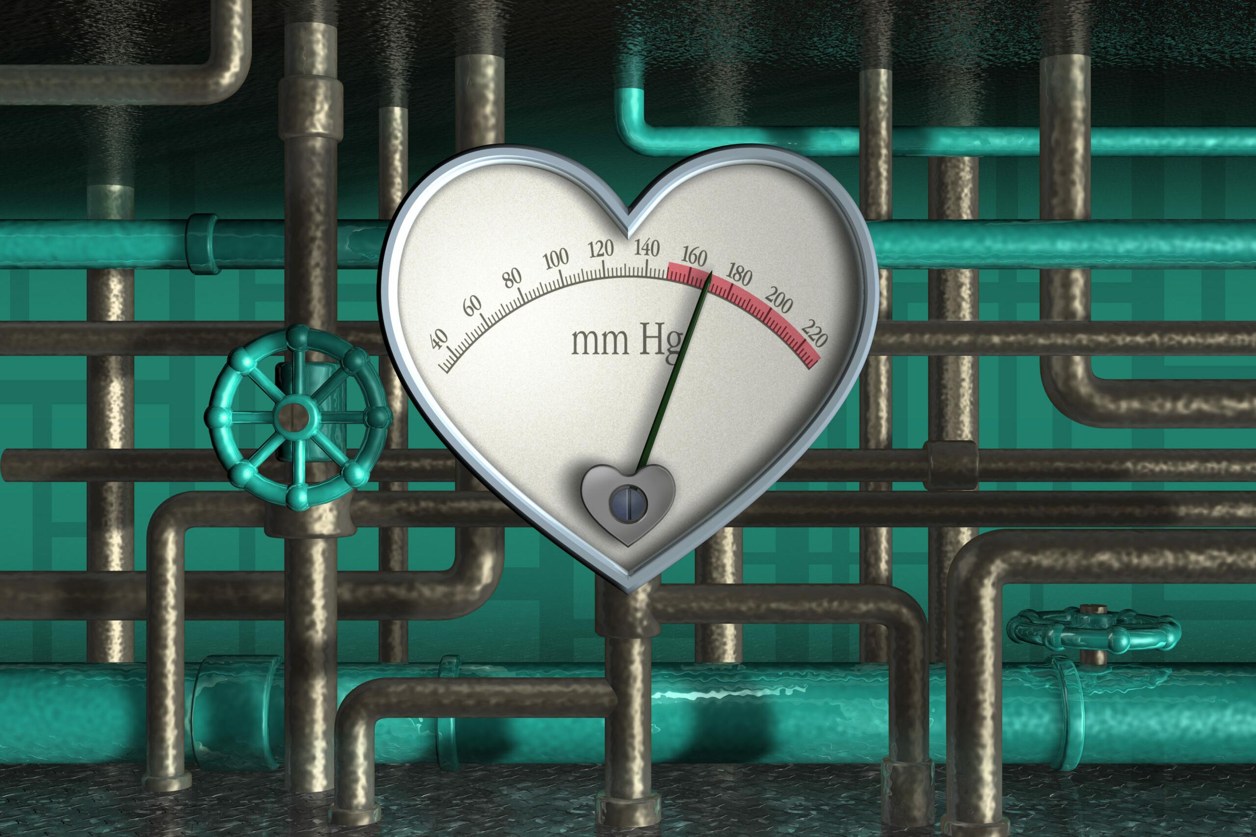 Bluthochdruck: Ein Rohrsystem führt zu einem metallisch geformten Herz auf dem die Pulsfrequenz angezeigt wird